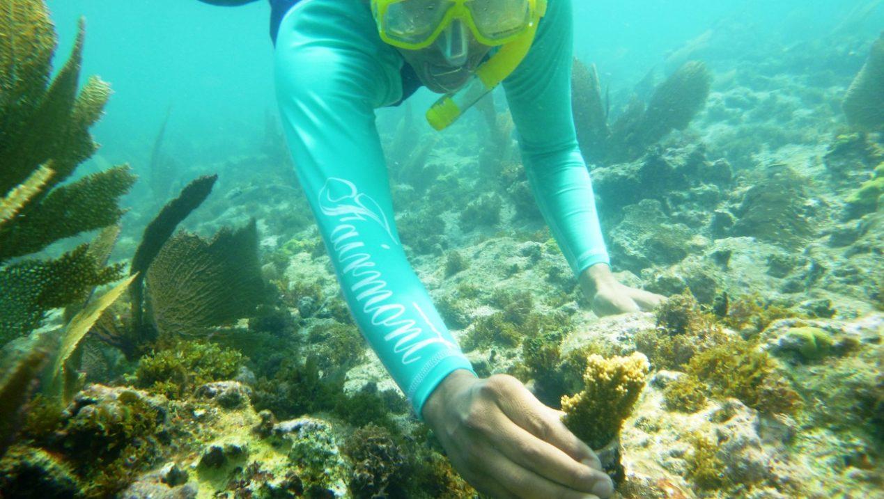 Coral Reef Restoration Program at Fairmont Mayakoba