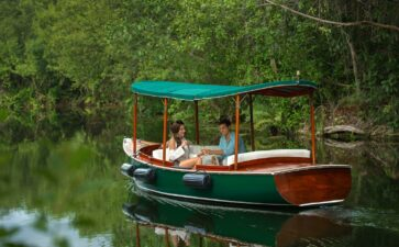 Birdwatching & On-property Boat Tours